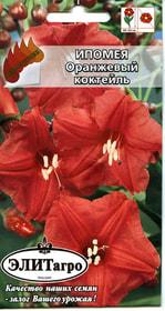https://content.gdesemena.ru/images/catalog/26276_9e2c0929ba65eca7aeb424b70e304b6d.jpg