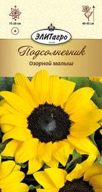 https://content.gdesemena.ru/images/catalog/26345_6ee4e297921609c743d11e0eba32c700.jpg