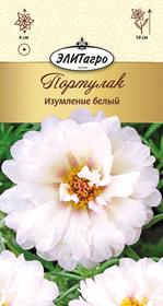 https://content.gdesemena.ru/images/catalog/26347_0a510e16965d3fe9ad7a14c9c3093987.jpg