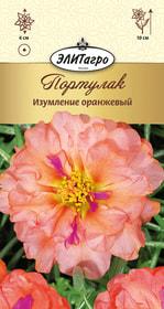 https://content.gdesemena.ru/images/catalog/26349_e80d5623734a7666231fc17cf9568a20.jpg