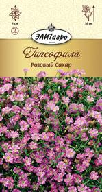 https://content.gdesemena.ru/images/catalog/26461_b27f1059a0ee5e7125826452d005d48c.jpg