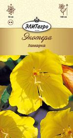 https://content.gdesemena.ru/images/catalog/26510_7aa46a045441de7e8a1139d140270aad.jpg